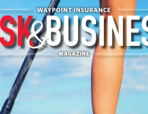 Spring 2017 Risk & Business Magazine