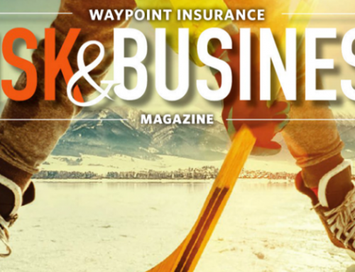Winter 2017 Risk & Business Magazine